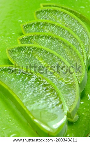 Slice Aloe Vera (Aloe barbadensis Mill.,Star cactus, Aloe, Aloin, Jafferabad or Barbados) a very useful herbal medicine for skin treatment and use in spa for skin care. - stock photo