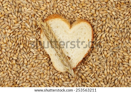 Slice of crusty bread in the shape of a heart surrounded by grains of barley with an ear of barley - stock photo