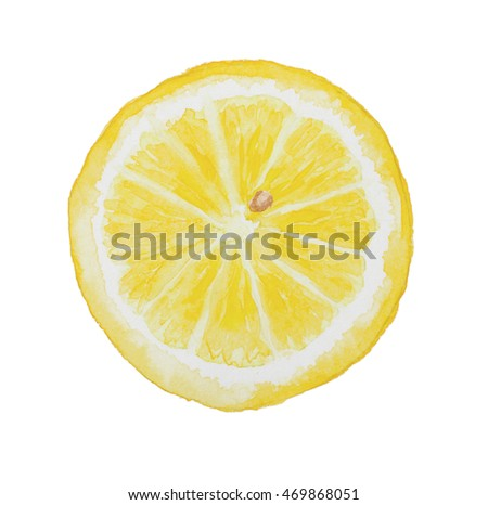 Slice of lemon isolated on white background. Watercolor illustration. Drawn by hand.