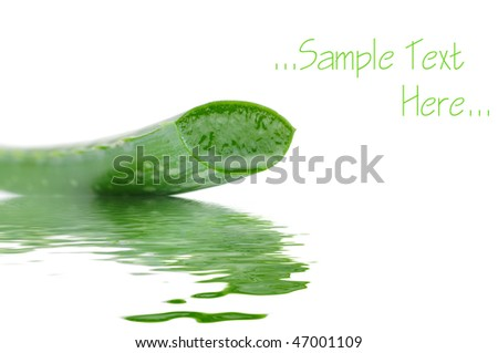 Sliced aloe leaf in water isolated on white background - stock photo