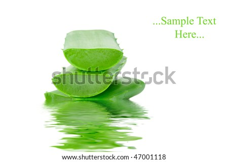 Sliced aloe leaves in water isolated on white background - stock photo