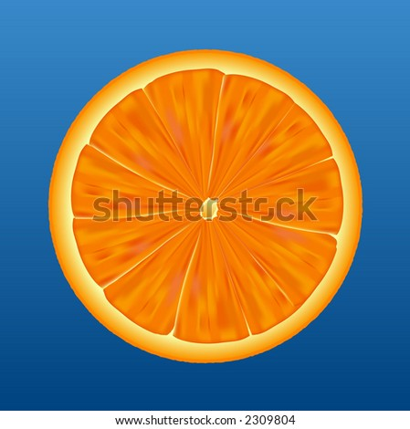 Sliced orange half showing detail on a blue background. Vector. - stock photo