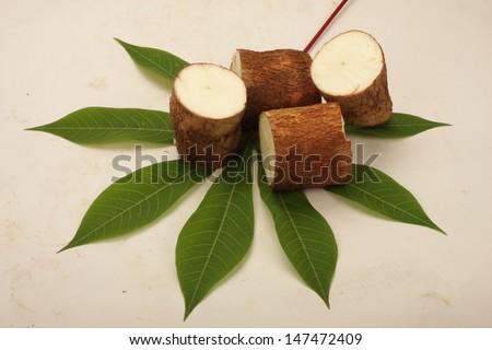 Sliced raw Tapioca,Cassava on tapioca leaf. - stock photo
