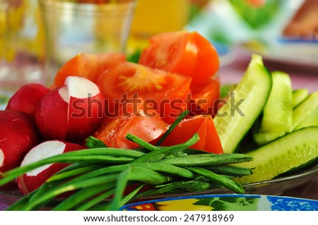 sliced tomatoes, cucumbers, radish and onion - stock photo