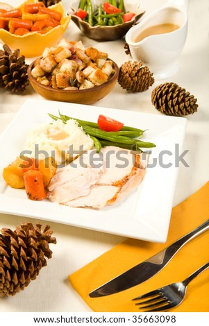 Sliced turkey breast on square plate with vegetables - stock photo