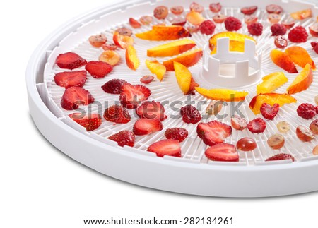 Slices of berries and fruits on dehydrator tray. Isolated on white background. Selective focus - stock photo