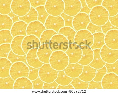 Slices of citrus fruit isolated against a white backgound - stock photo