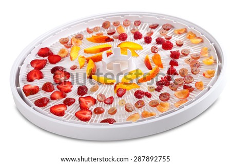 Slices of fruits and berries on dehydrator tray. Isolated on white background. - stock photo