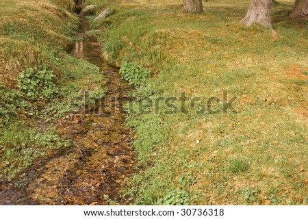Slim Brooks with grass and trees on the sides - stock photo