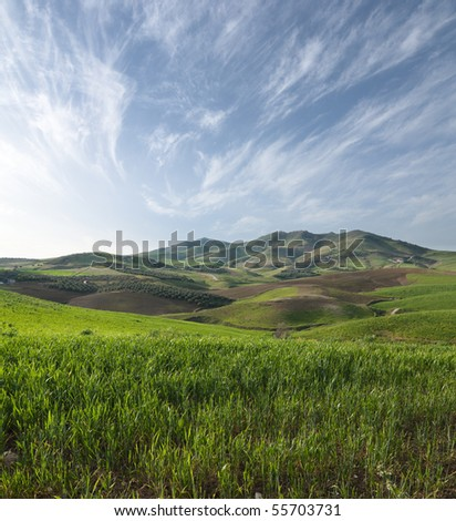 slope grassy on sicilian hinterland hills - stock photo
