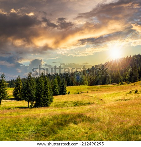 slope of mountain range with coniferous forest and village at sunset