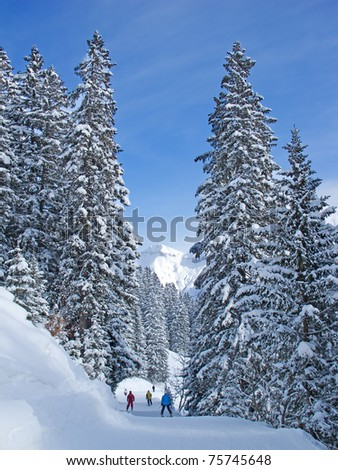 Slope on the skiing resort Elm. Glarus. Switzerland