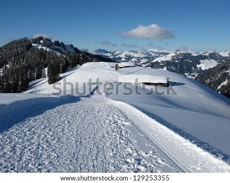 Slope on the Wispile, Bernese Oberland