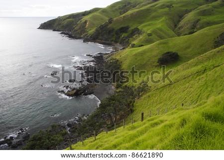 Slopes of the Moehau range on the Coromandel peninsula on the North island of New Zealand - stock photo