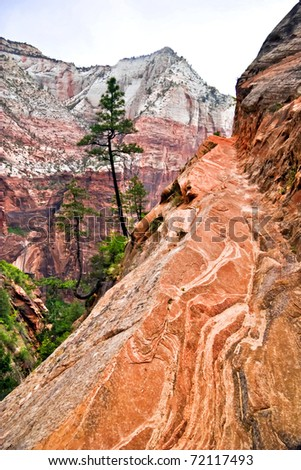 Slopes of Zion canyon. Utah. USA. - stock photo