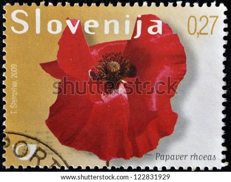 SLOVAKIA - CIRCA 2009: A stamp printed in Slovakia shows papaver rhoeas, circa 2009 - stock photo