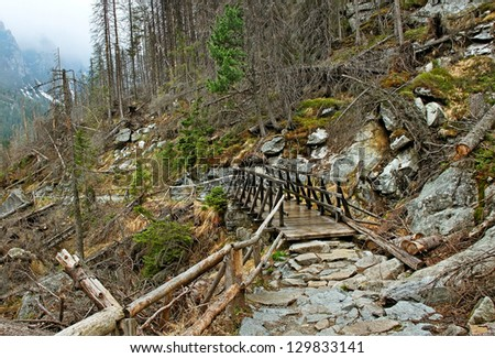 Slovakia mountains with footpath and wood bridge.