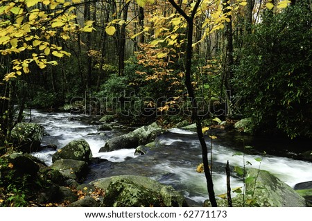 Slow moving stream with fall leaves in Vermont - stock photo