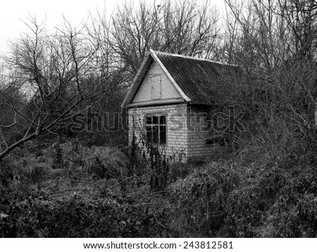 small abandoned house surrounded by leafless trees  - stock photo