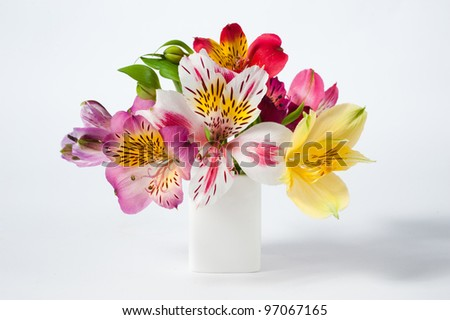 Small alstroemeria flowers in vase - stock photo