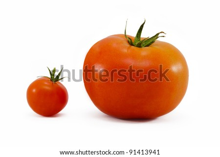 Small and big tomatoes - stock photo
