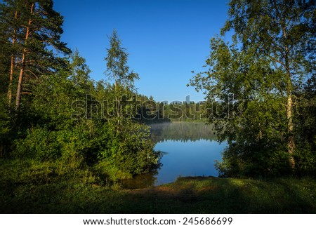 small and remote forest lake in the morning - stock photo