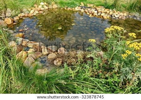 Overgrown yard stock photos royalty free images vectors for Artificial plants for outdoor ponds