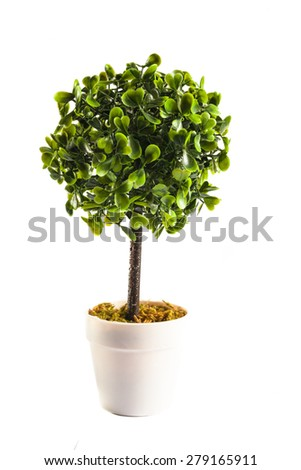 Small artificial tree in a pot isolated in white background. Concept image for interior design and decoration of home and office. Copy space available. - stock photo