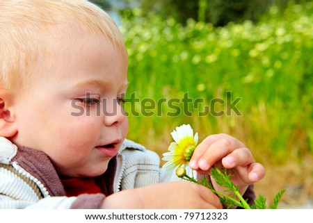 small baby boy holding a daisy in his hand in the field of flowers - stock photo