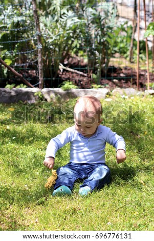 Small baby boy sitting on grass in garden playing with plant on sunny summer day. Discovering the world