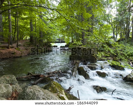 Small beautiful brook stream waterfall cascade in a forest The Dolomites North Italy - stock photo