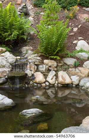 Small beautiful pond with ferns and little waterfall - stock photo