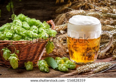 Small beer with a large foam surrounded by hops - stock photo