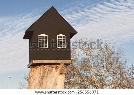 small black house on a big root - stock photo
