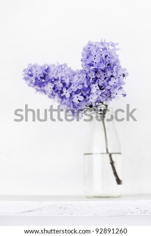 Small bouquet of lilac in glass bottle on white wooden shelf as detail of interior - stock photo