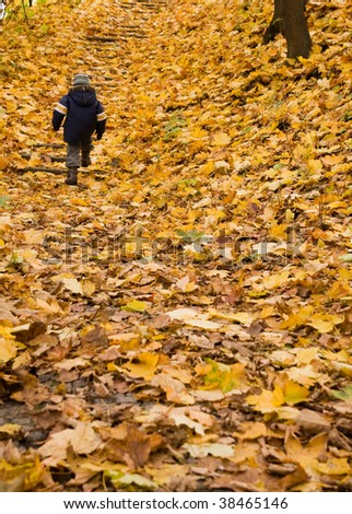 Small boy climbing on stairs outdoors in autumn - stock photo