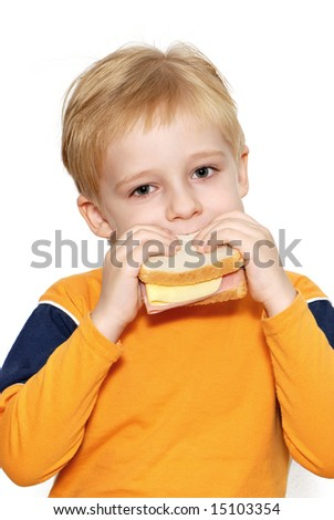 Small boy eating healthy sandwich - stock photo