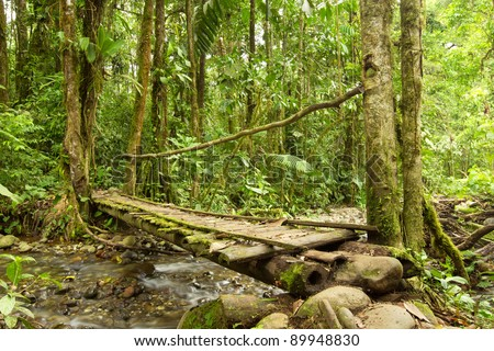SMALL BRIDGE IN THE ECUADORIAN JUNGLE MADE FROM WOOD, THE ONLY MATERIAL AVAILABLE IN THIS AREA   - stock photo