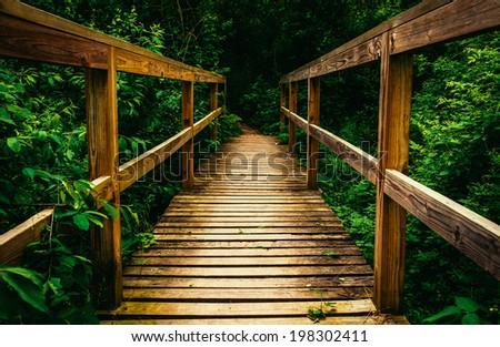 Small bridge on a trail in Codorus State Park, Pennsylvania. - stock photo