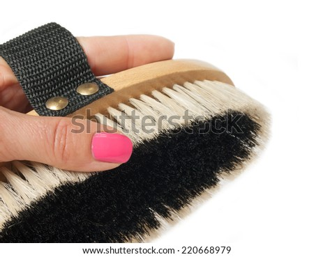 small  brush for grooming horses with hand  on white - stock photo