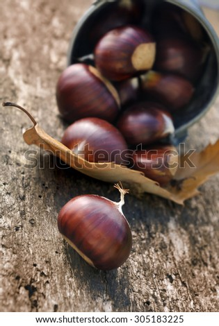 small bucket chestnuts spilling on board - stock photo