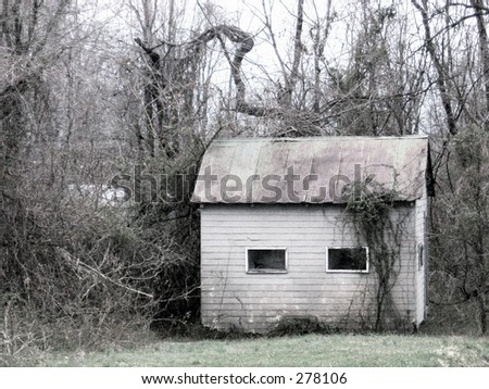 Small building in the woods