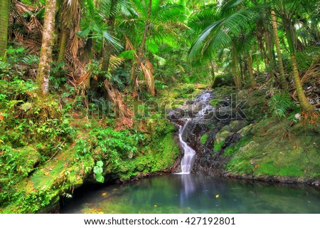 Small cascade in El Yunque national forest, Puerto Rico - stock photo