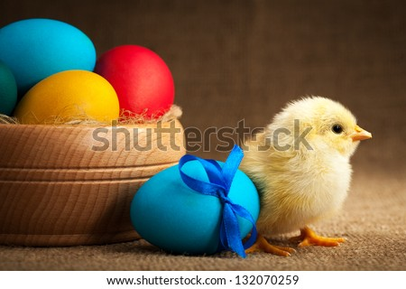 small chick with easter eggs - stock photo