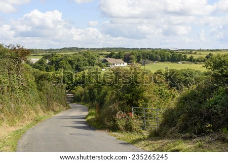 small country road between hedges, Cornwall, landscape with a small country road bending between green hedges in hilly lush country, shot in summer bright light  - stock photo