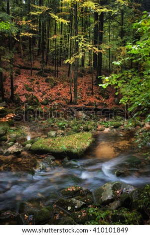 Small creek in autumn mountain forest scenery, tranquil natural environment, beauty of nature - stock photo