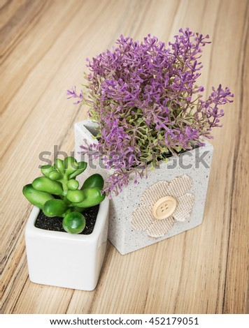 Small decorative potted plants on the wooden background. Home decoration. Vertical composition. - stock photo