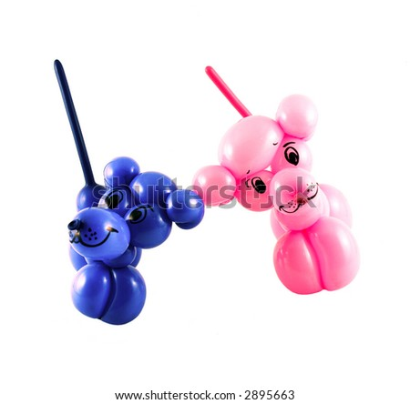 Small dogs made from balloons set on white background
