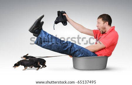 Small dogs pull the man in a basin, humor concept - stock photo
