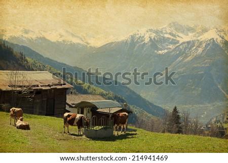 Small farm in Swiss alps.  Bodmen, Valais, Switzerland. Added paper texture  - stock photo